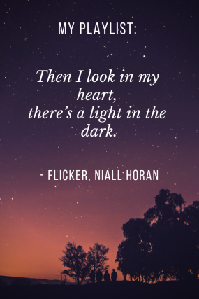 flicker niall horan.png